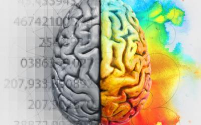 Kuris smegenų pusrutulis Jus valdo?